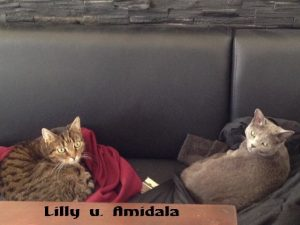 """Lilly"" u. ""Amidala"""